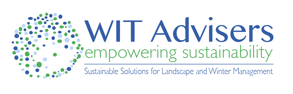 WIT Advisers Logo