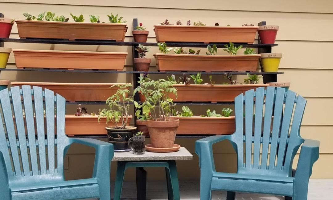 Tiered Salad Garden
